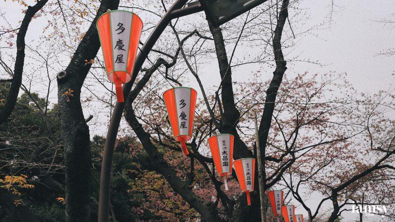 2016-iamsy-mar-tokyo-ueno-park-16