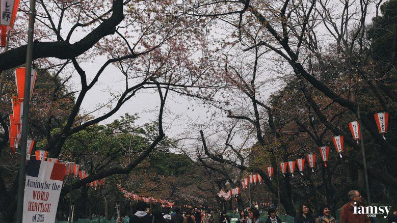 2016-iamsy-mar-tokyo-ueno-park-17