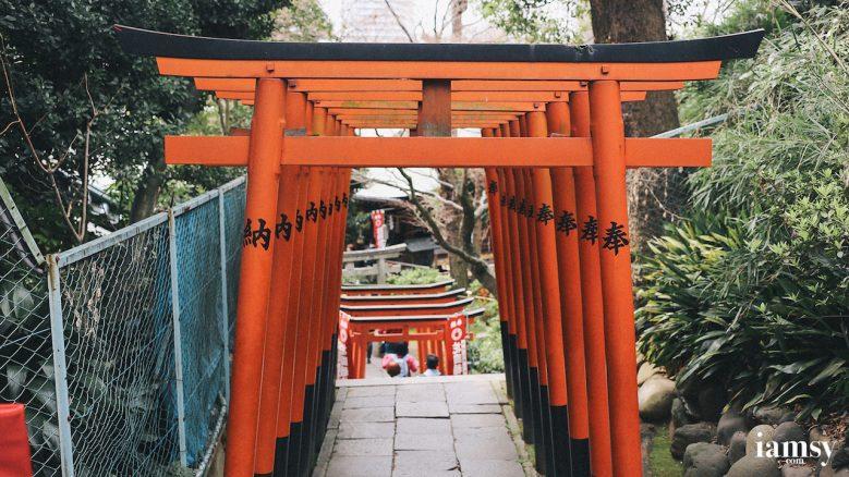 2016-iamsy-mar-tokyo-ueno-park-22